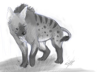 Hyena by Taiyles