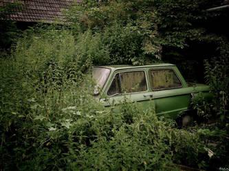 Oldtimer by Haszczu