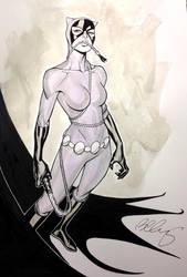 Catwoman by bernardchang