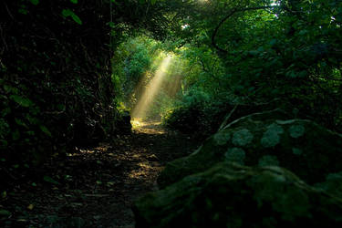Suns rays  stock 2 by AngiWallace