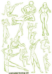 Practise poses by shamisho