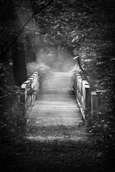 Forrest Bridge by Atkin1776