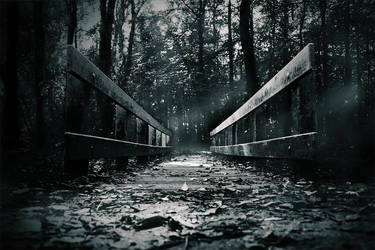 wooden bridge by Atkin1776