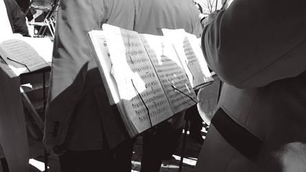 serenade by seloart