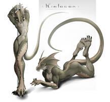 Commission - Kielaran by Kredri