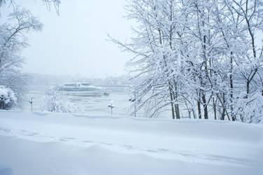 frozen silence by Koobassoff