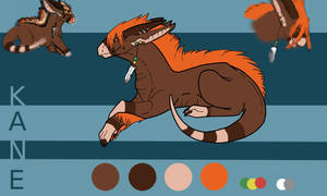 Kane Ref Sheet by SuperRara