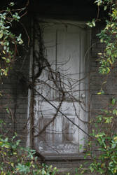 Overgrown Door by Rissa90