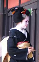Sakkou by Fuyou-hime