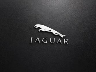 Silver realistic logo mockup by DesignsCanyon