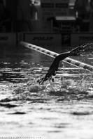 swimmer by thePetya