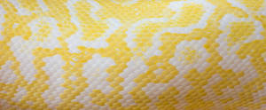 skin your gmail - yellow edition by ByLagarto