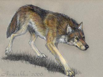 Wolfie trotting - Jen trade by Annushkathesetter