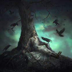 Murder of Crows by 0oki