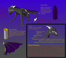 Reyeth Reference Sheet by ReyethTheDragon