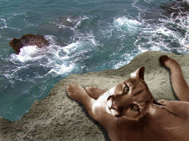 Cliffside Cougar by Sandusky78