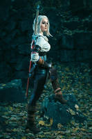 Witcher 3 - Tor Zireael by love-squad