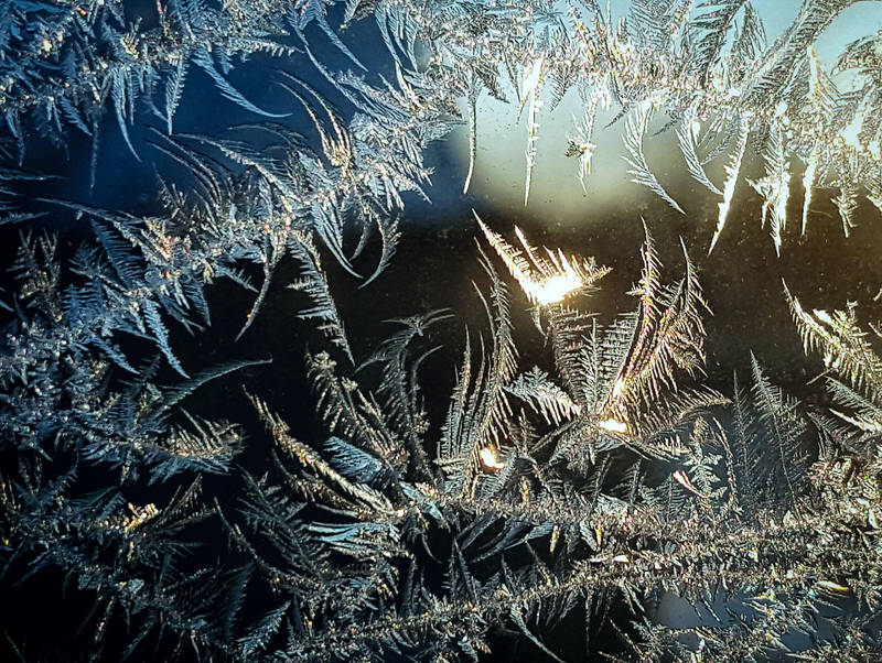 morning frost by yabbles