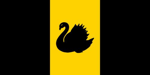 Swan by matritum