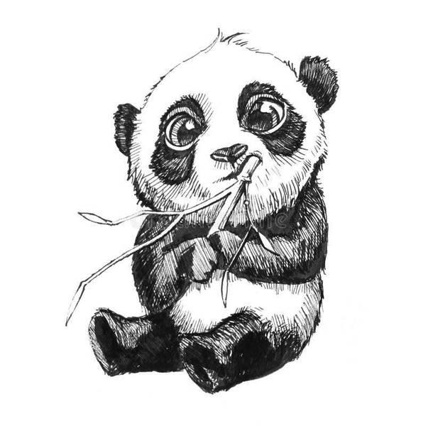 A Panda Eating Bambus 3 By Justinvoninsta On Deviantart