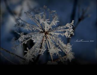 Winter's Grace by MarisaMalice