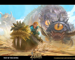 breath of the wild fanart 1 by TylerEdlinArt