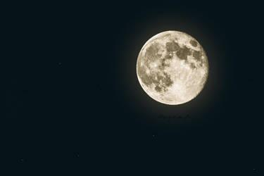 My little Moon by HazemKamal