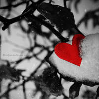 Winter Heart by najmo