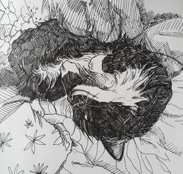 catman by chuchuchuya