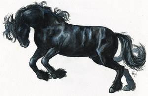 Black Horse (Speedpaint Video) by ARVEN92