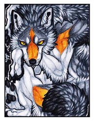 ACEO - Tucked [PATREON REWARD] by ARVEN92