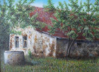 Acacia salas by thesvetislav