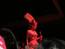 Emilie Autumn 15 by chaoticXinsane