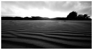 Doran Beach by themobius