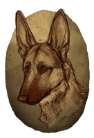Arkay by Canis-ferox