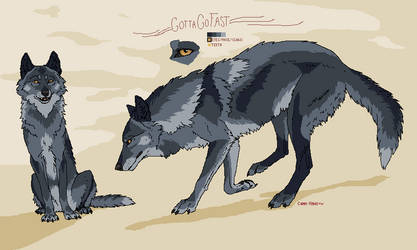 [CLOSED] gotta go fast - Wolf Adoptable by Canis-ferox