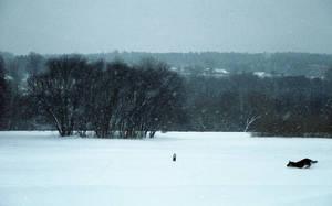 Winter Hunt by Helkathon