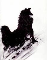 The Black Dog by Futureperfekt