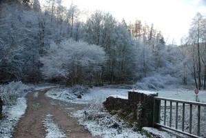 Snowy Forest Road Stock 2 by BirdsistersStock