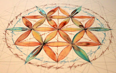 Flower of life - study 1 by Carnegriff
