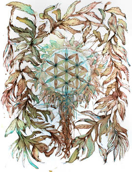 Flower of Life - study 3 by Carnegriff