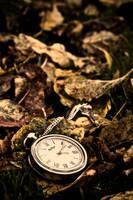 Autumn change by mitchorr