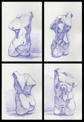 Figure Drawings 68-71 (Torsos) by Radiance-Eternal
