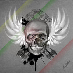 skull inspiration by amincreations