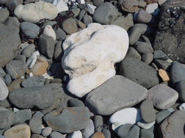 The Rock Skull by cthonus