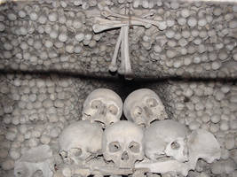The Stare by cthonus