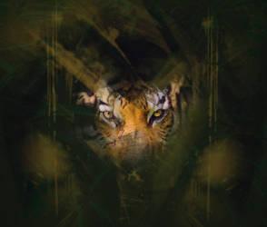 Stalking Tiger by CuzImaJellyfish