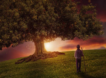 Tree of Life by CuzImaJellyfish