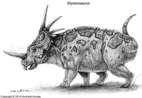 Styracosaurus Study by TheDragonofDoom