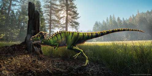 Pachycephalosaurus Wyomingensis Restored by TheDragonofDoom